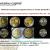 Инвестиции в редкие монеты с Монетариус.Кэпитал v.1.0